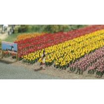 120 Tulipaner