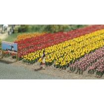 120 Tulpen H0