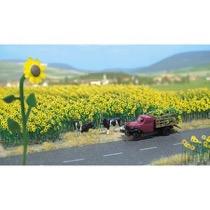 Sonnenblumenfeld H0