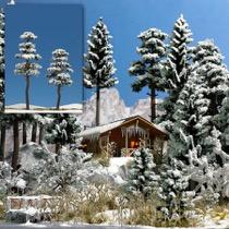 2 Snedækkede Fyrretræer, 130-160 mm