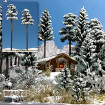 2 Snedækkede Fyrretræer. 195/210 mm