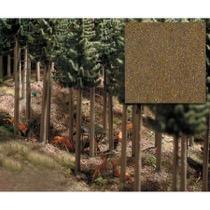 Skovbund - løvskov