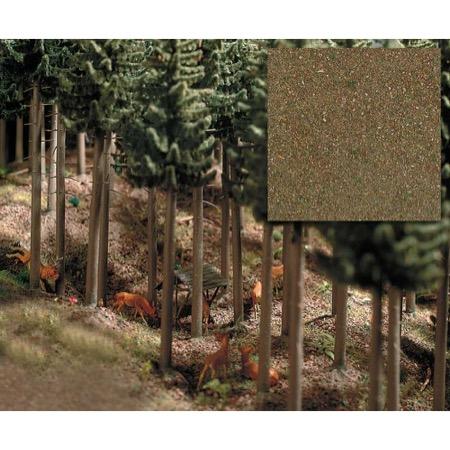 Skovbund - Nåleskov