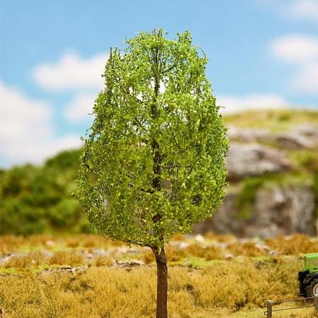 Bøgetræ