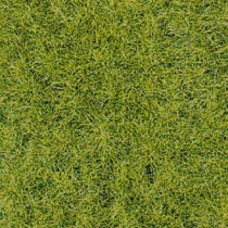 realistic wild grass forest floor / 28