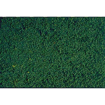 HEKI mikroflor Fyrretræs Grøn