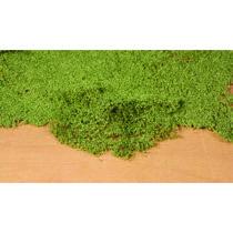 Løv bund Medium grøn