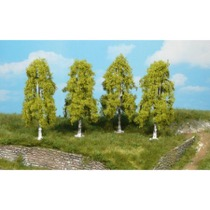 weeping birches 9 cm / 4 pc
