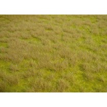realistic wild grass savannah / 45 x