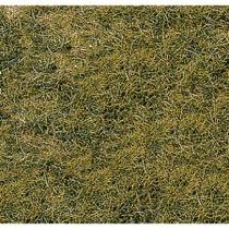 realistic wild grass mountain meadow / 40