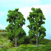 chestnut trees 20 cm / 2 pc