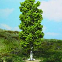 birch tree 20 cm