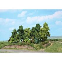 deciduous forest 1-11 cm / 18 pc