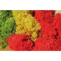 lichen light assorted colours 30 g