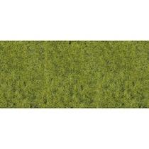 static wild grass forest floor 5-6