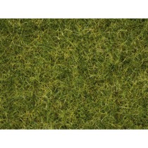 Græsblanding - Sommereng 2,5 - 6 mm