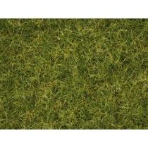 Master Grass Blend Summer Meadow, 2,5