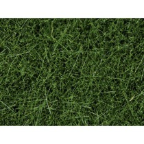 Vildgræs - Mørk grøn, 6 mm