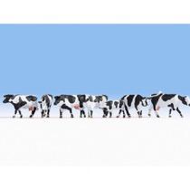 Sortbrogede køer