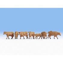 Køer, Brune