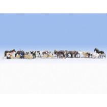 Stort økonomisæt - Dyr