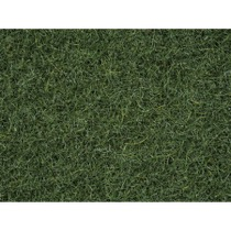 Strøgræs Hedelandskab, 2,5 mm