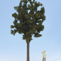 Deciduous Tree, approx. 35 cm high
