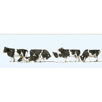 Kühe, schwarz gefleckt