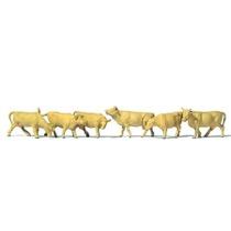 Køer Lysebrune