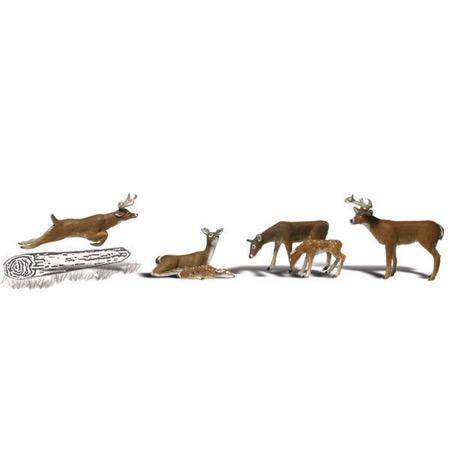 0 Hirsche / Wild